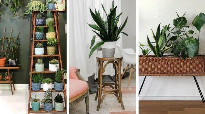 10 Idées exclusives de supports de plantes à introduire dans votre intérieur