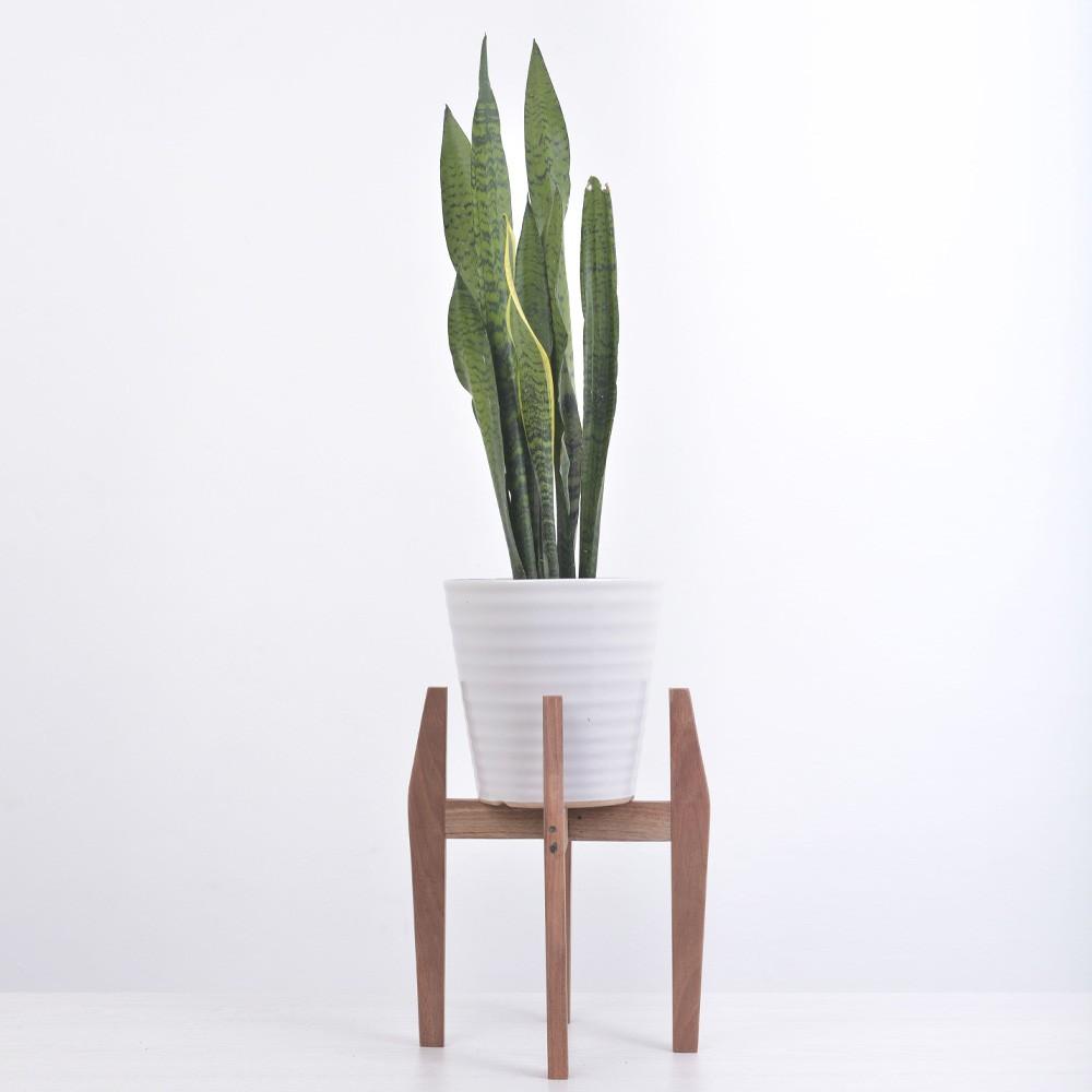 Support à plante rond en bois
