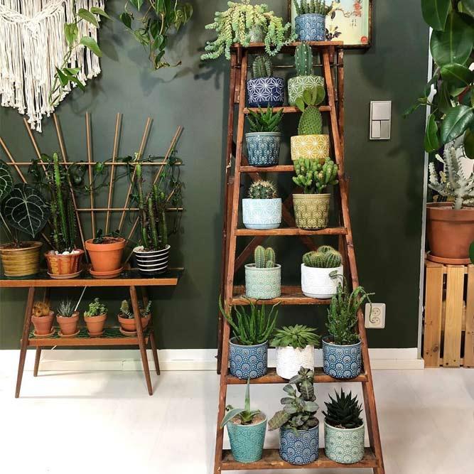 Support à plantes en bois à échelle