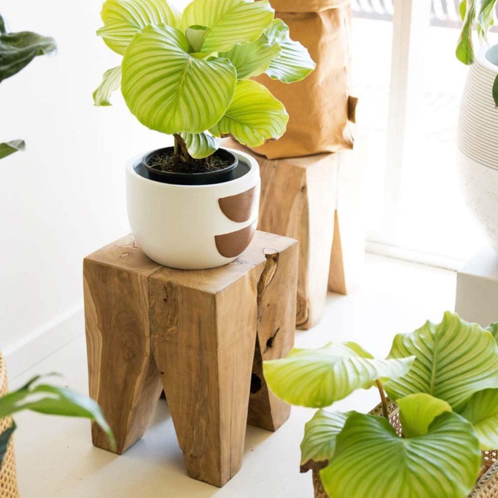 Support de tabourets en bois