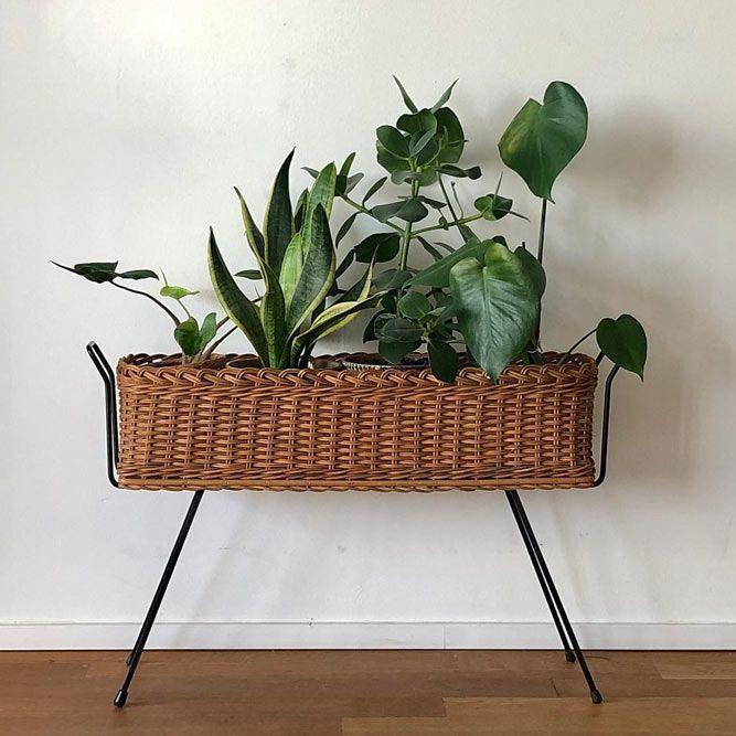 Supports à plantes en bois vintage