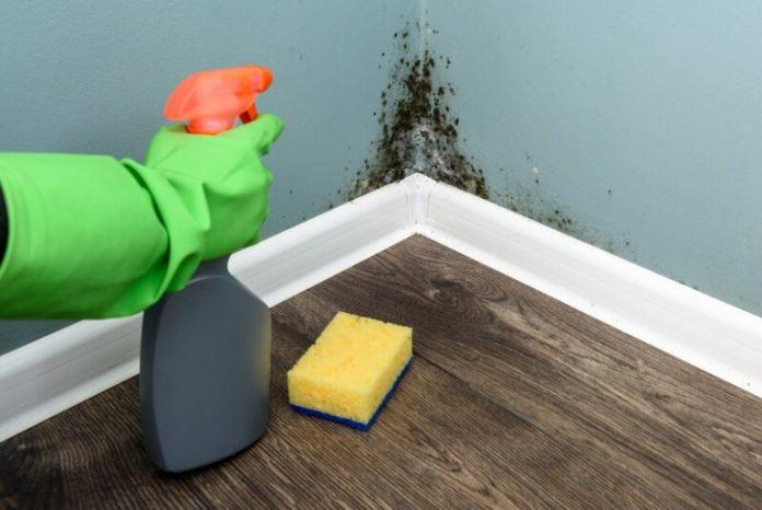 Comment mettre fin à l'humidité dans la maison