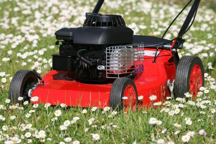 tondeuse, herbe, jardin, pelouse, gazon, couper